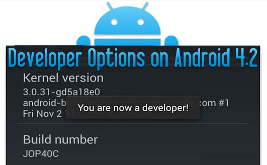 developer-options-on-android-4.2